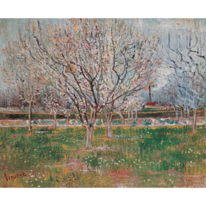 Reprodukcja Plum Trees Orchard in Blossom, Vincent van Gogh, (90 x 60 cm)