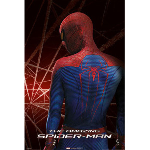 Plakat, Obraz SpiderMan - The Amazing Spider Man, (61 x 91,5 cm)