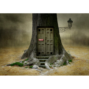 Fotografia artystyczna Only Opens if you are open for fantasy, Ben Goossens