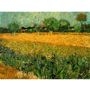 Reprodukcja obrazu Vincenta van Gogha View of arles with irises in the foreground, 40x30 cm