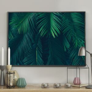 DecoKing - Plakat ścienny - Palm Leaves 40x50 cm