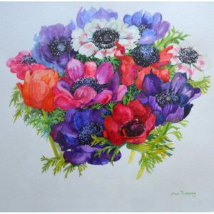 Joan Thewsey - Reprodukcja Anemones red white pink and purple 2000