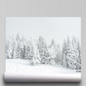 Fototapeta Snowbound