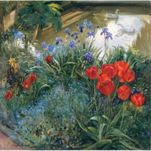 Timothy Easton - Reprodukcja Red Tulips and Geese