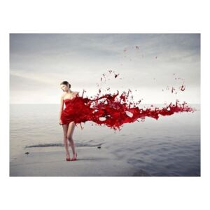 Fototapeta - Red beauty