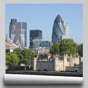 Fototapeta Gherkin and Tower of London