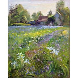 Timothy Easton - Reprodukcja Dwarf Irises and Cottage 1993