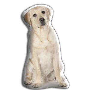 Poduszeczka Adorable Cushions Labrador retriever