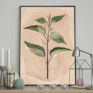 DecoKing - Plakat ścienny - Nettle 40x50 cm