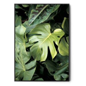 Plakat WILD AND GREEN no.1